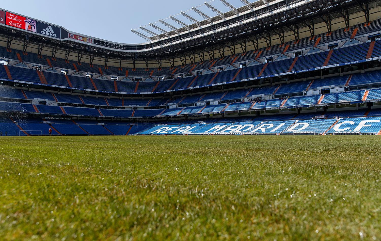 Césped del Bernabéu