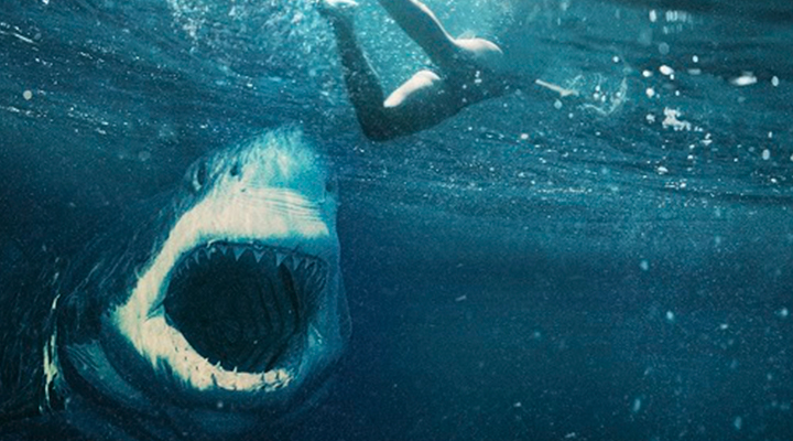 Póster de la película 'Tiburón Blanco' | A Contracorriente